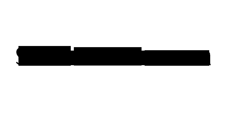 SkinTampa_logo