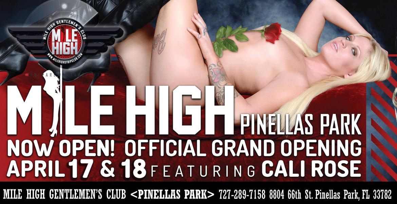 mile-high-pinelas-park